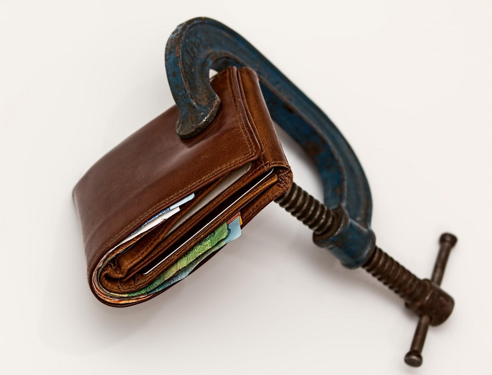 portfel pieniedzy